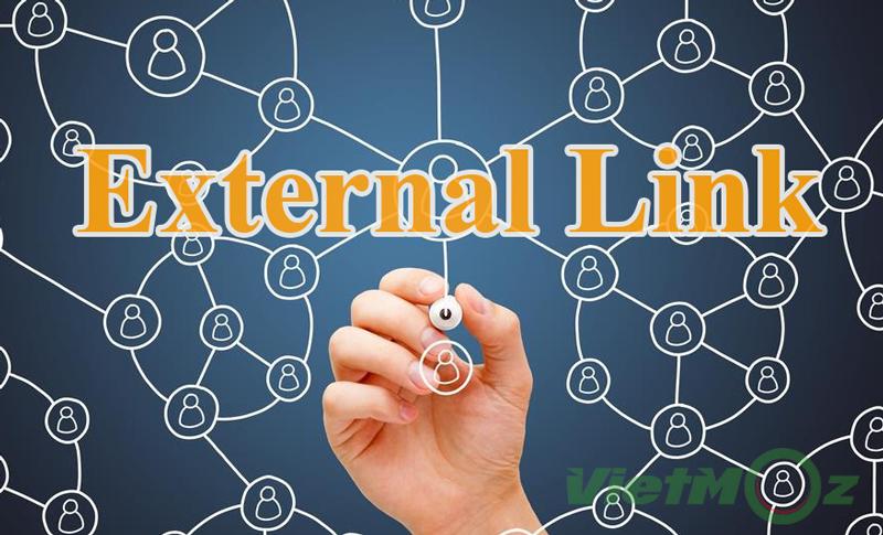 External link là gì? Cách sử dụng liên kết ngoài hiệu quả