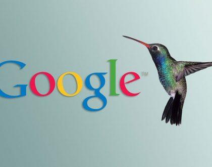Google hummingbird là gì? Những điều bạn cần biết về thuật toán chim ruồi