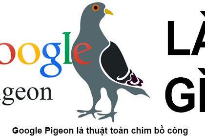Google Pigeon là gì? Điều bạn cần biết về Pigeon
