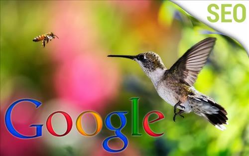 Ảnh minh họa thuật toán chim ruồi của google