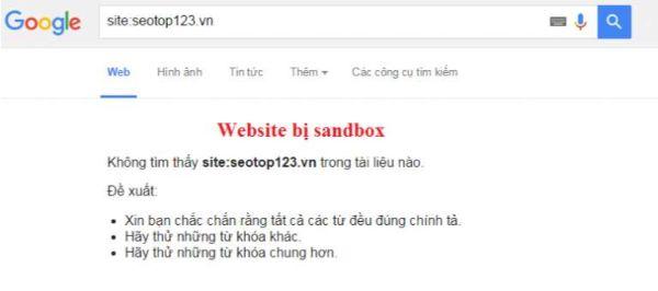 Website dính phải google sanbox