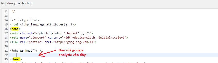 Dán mã google analytic vào thẻ head